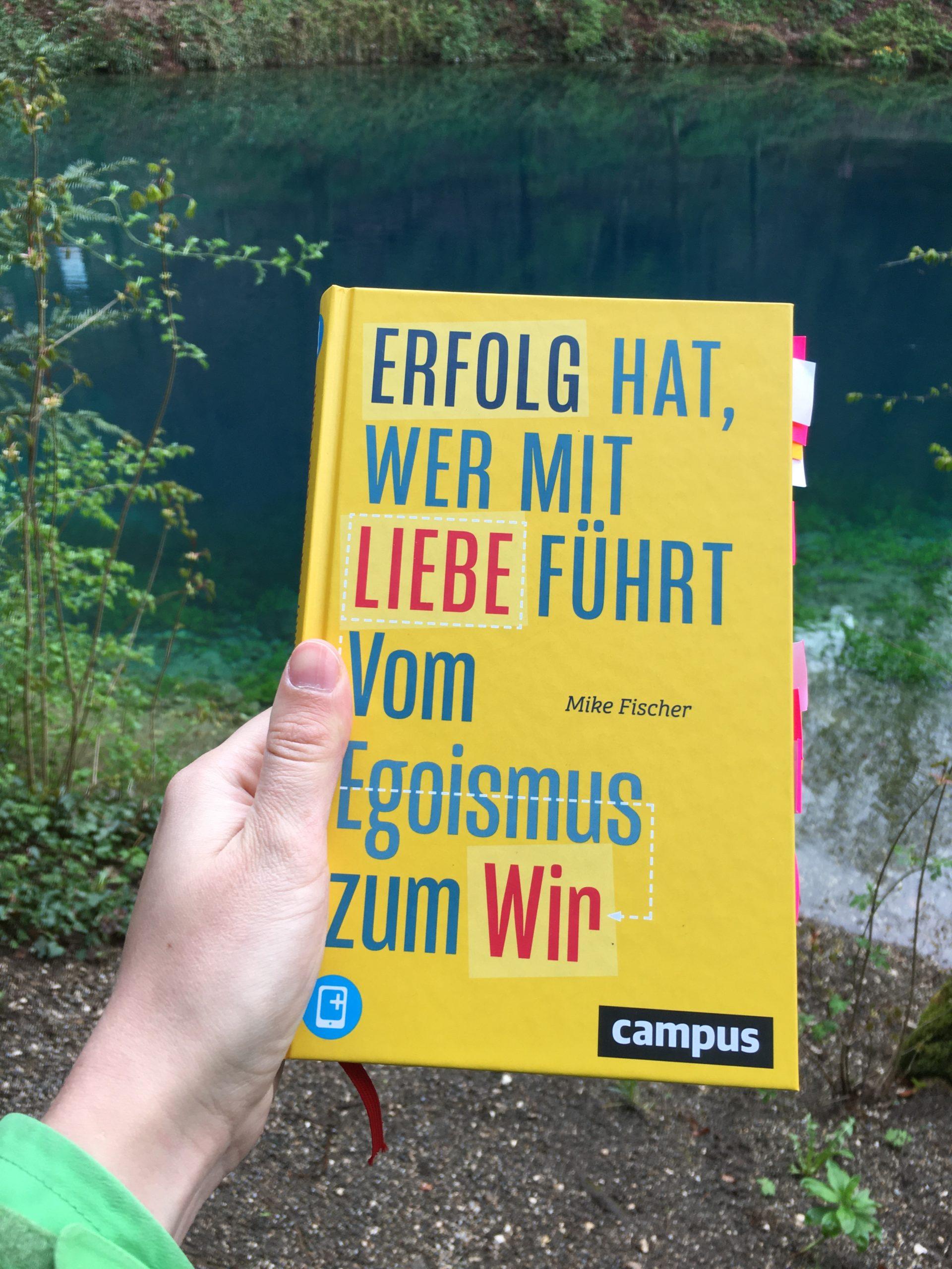 """You are currently viewing 5 Gedanken aus """"Erfolg hat, wer mit Liebe führt"""" von Mike Fischer"""